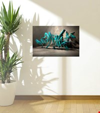 Graffiti 3D Canvas  Graffiti 3D 16121800535331223431085119-